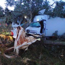 A10-HGV-vs-tree-30.06.2016---courtesy-of-Magpas-Air-Ambulance.jpg